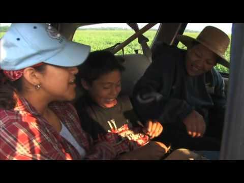 Children in the Fields [VIDEO]